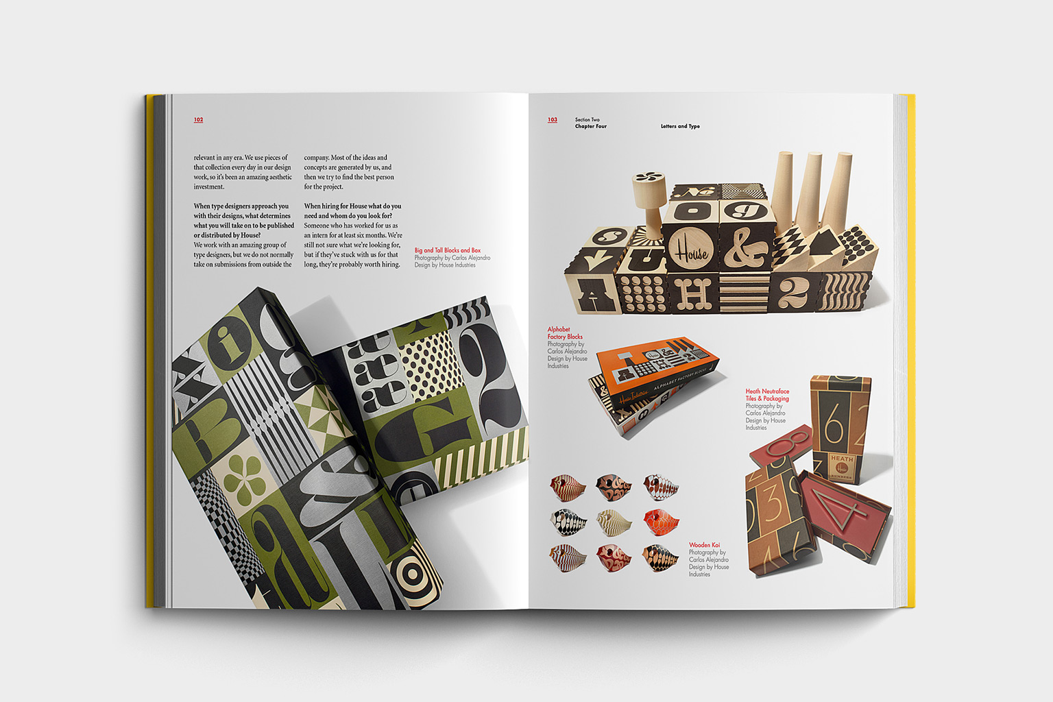 becoming a graphic digital designer book design previous project